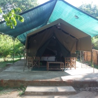 Croc Valley En-Suite Tent